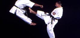 kung fu Mangalia