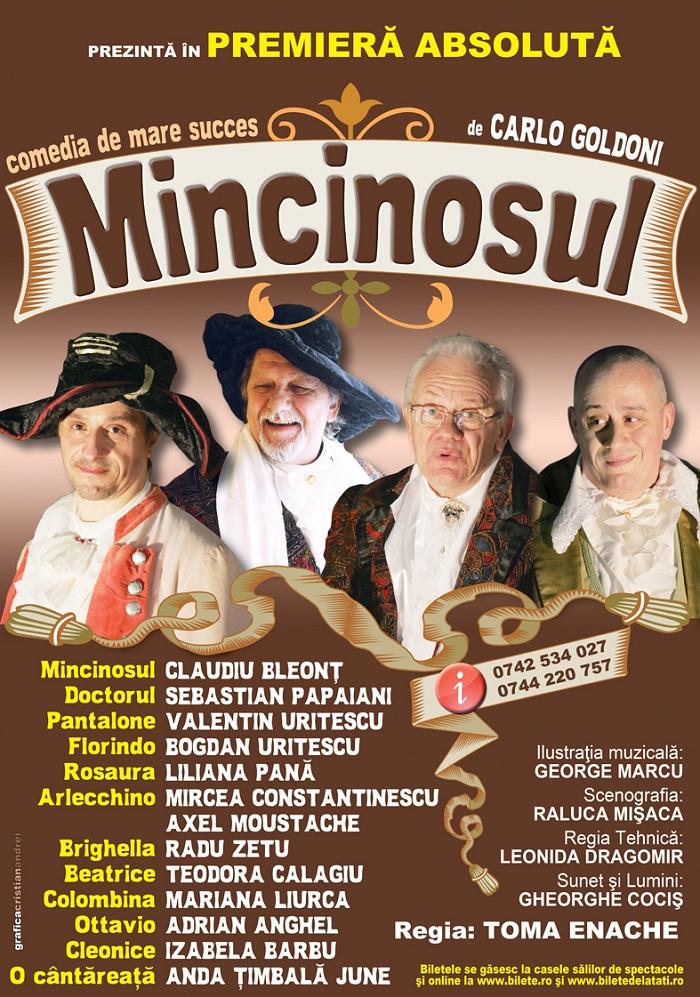 MINCINOSUL