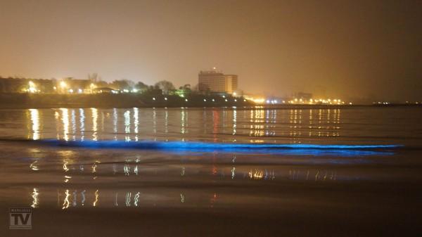 marea Mangalia