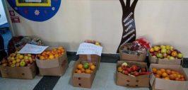 saptamana fructelor