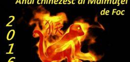 anul_chinezesc