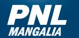 pnl mangalia