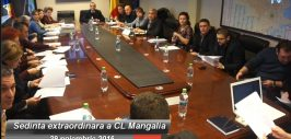 mangalia-consiliul-local